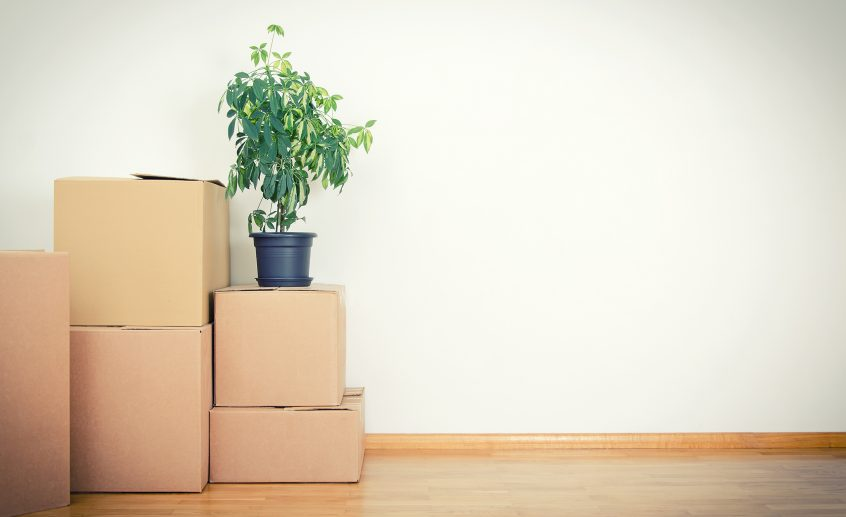 Removalists Melbourne Eastern Suburbs